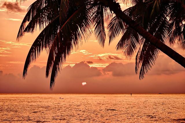 Vilamendhoo Island - Maldives