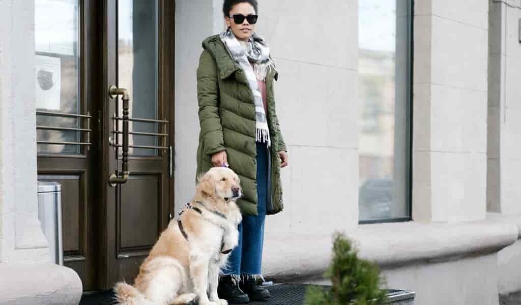 Un chien-guide robotisé pour les aveugles