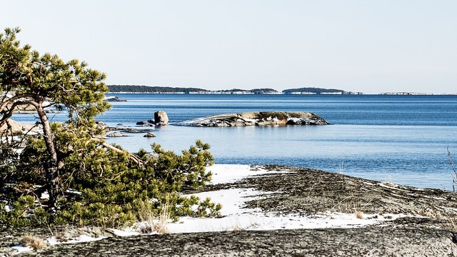 The Gulf of Finland 🌴