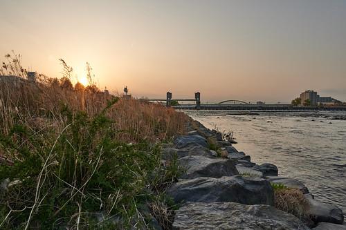 sunset river nature landscape riverbank 夕暮れ 川 自然 風景 河岸 noborito kawasaki kanagawa japan 登戸 川崎市 神奈川