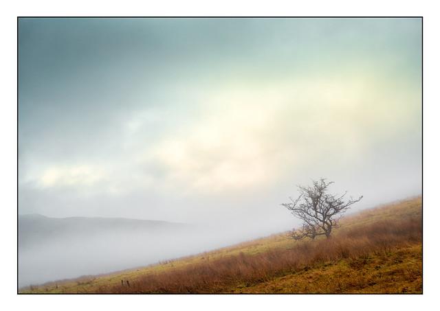 Derbyshire Moorland 9777