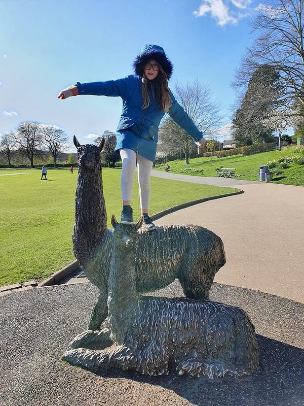 Jasmine climbing alpacas