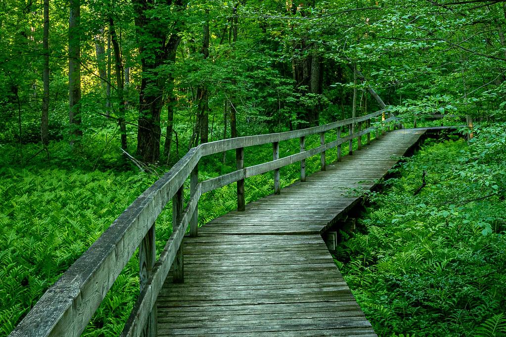 Boardwalk Robert Edmondson Park Halton Ontario