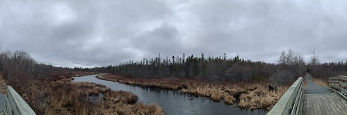 Panorama: Old Lawrencetown Road Trail