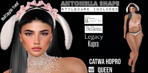 2L Gift Antonella Shape