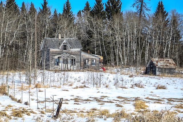 Woodsy Abandoned Farmhouse