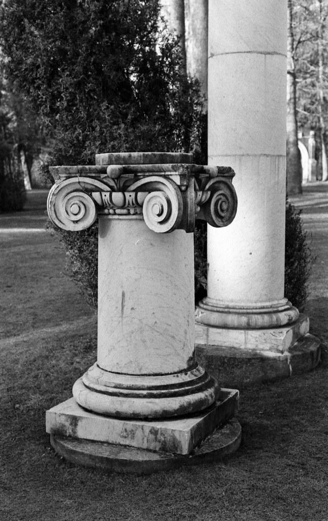 Snubnose Column