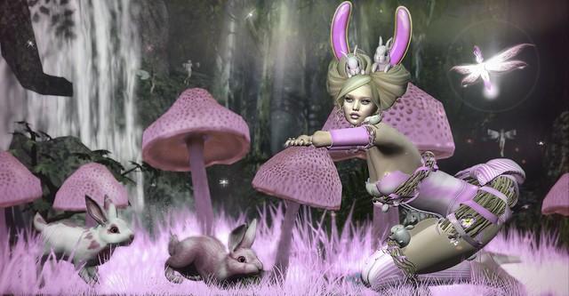 A Secret Meeting of the Pink Bunnies