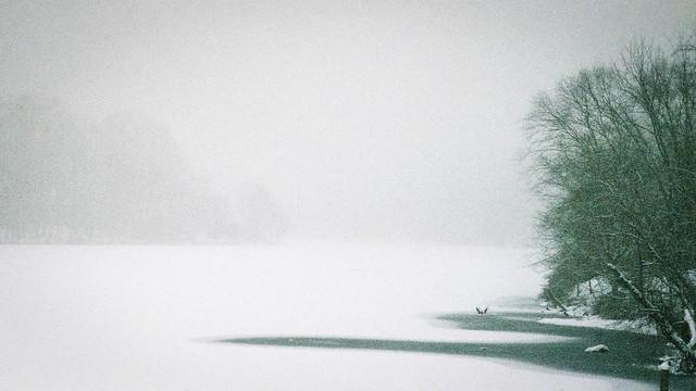 Snowy Morning at the Lake