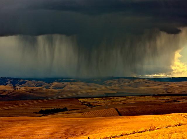 Black Cloud Downpour
