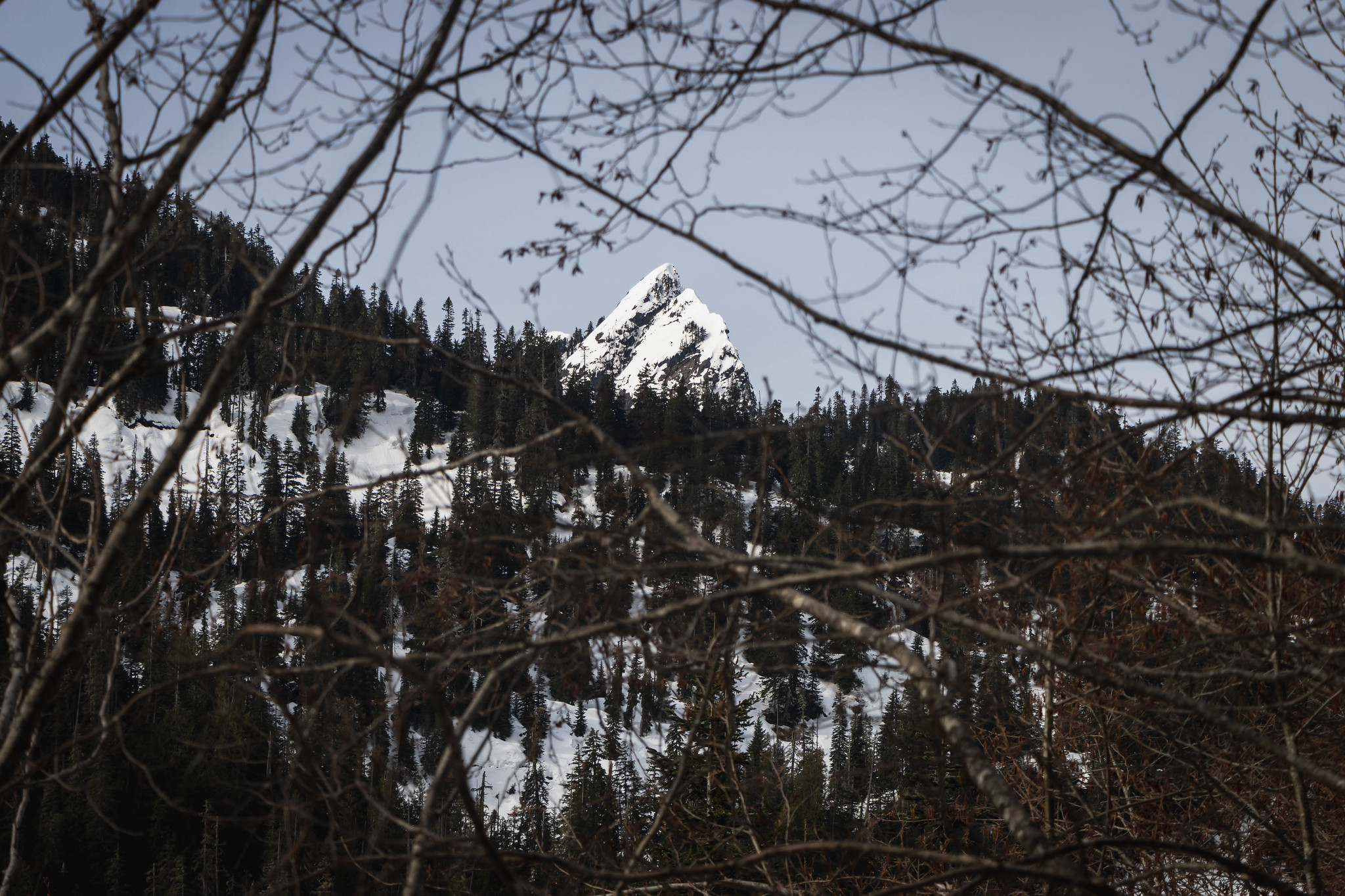 Bessemer Mountain poking out