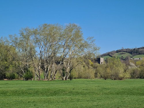Abergavenny Castle from Castle Meadows. (threejumps)