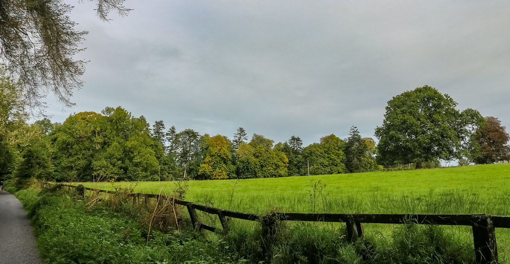 donore woodlands - westmeath