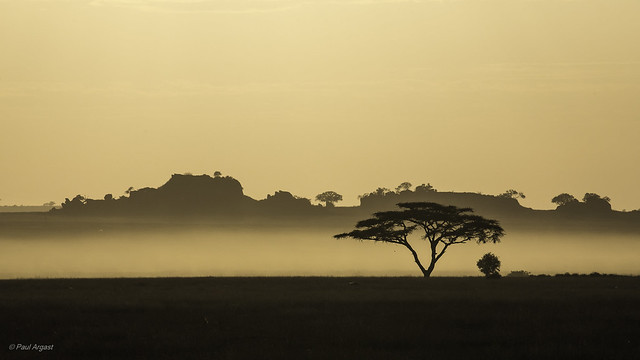 Serengeti Nature Skyline