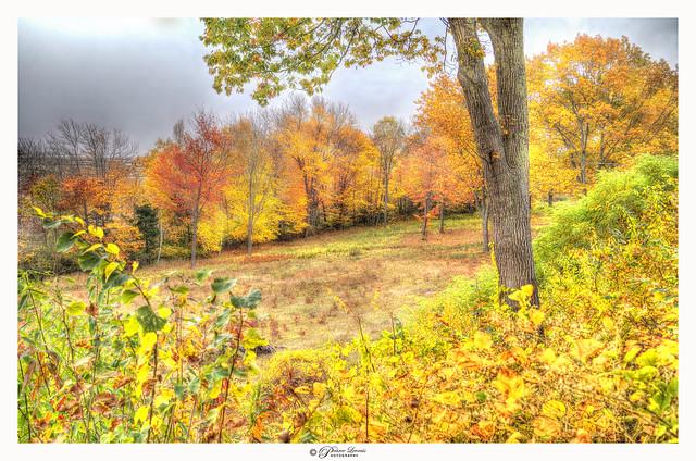Autumn Over The Foggy Atlantic (explored 04-07-2021)
