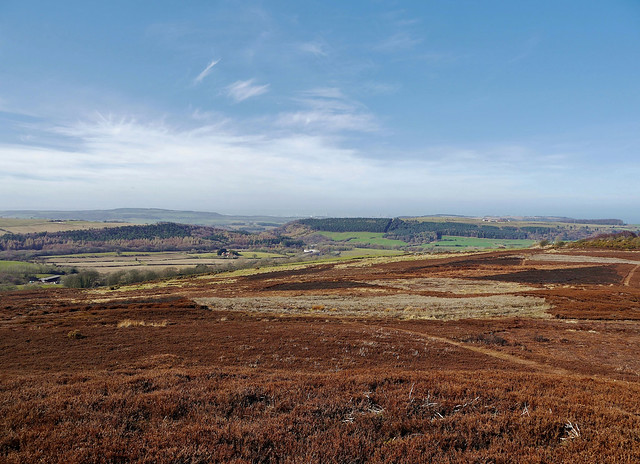 Birk Brow Viewpoint (North York Moors National Park,) Redcar and Cleveland Borough