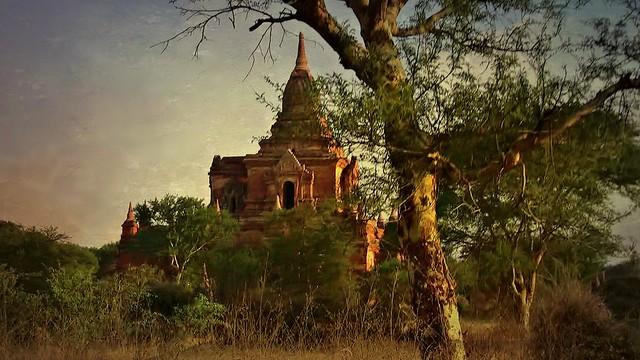 MYANMAR , Burma - Old-Bagan, mit der Pferdekutsche durch die ländlichen Vororte, zu den historischen Stätten, MYANMAR, Burma - Old-Bagan, by horse-drawn carriage through the rural suburbs to the historic sites, 78270/13548