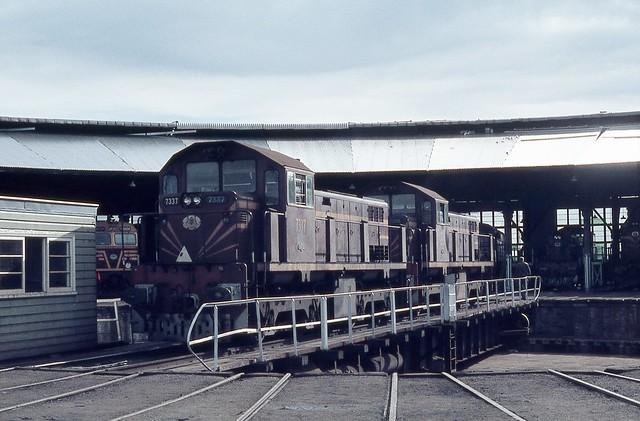 7337 + 7335, Broadmeadow Loco Depot, Broadmeadow, Newcastle, NSW.