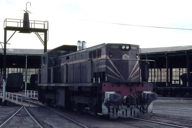 7337, Broadmeadow Loco Depot, Broadmeadow, Newcastle, NSW.