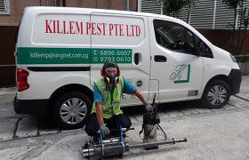 Killem-Pest-Control-service-singapore-280x180