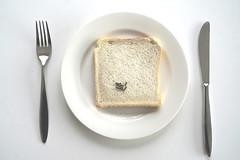 Rob Holstvoogd; Heerlijk, een boterham met chocoladehagelslag