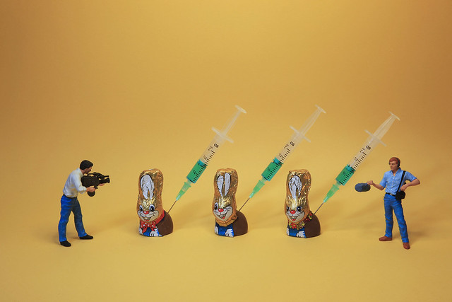 scoop : rabbit family vaccinated