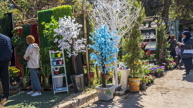 From Egypt's Spring Flowers Show 2021