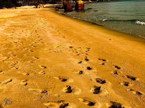 bintan footprints sand sunrise asia indonesia early binodtherat nearsingapore sun souteastasia island earlyrisers clubmed ferry southeast risers kepulauanriau flickrexploreme