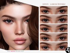 GENUS Lashes 06 - 5 Tintable Lashes @ UNIK EVENT