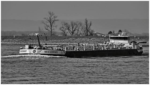 BRIENZERSEE - Rhein - Germany