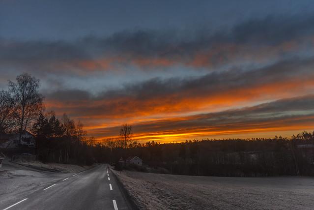 Frost at sunrise, Hølen, Norway