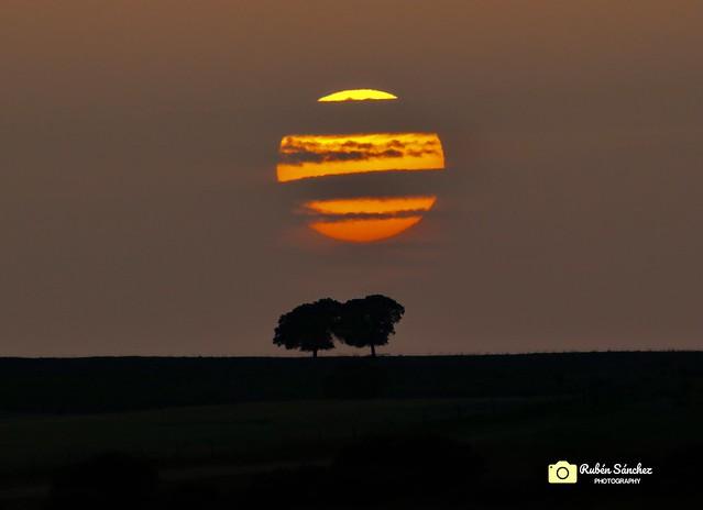 """✅ """" En el desierto del Sahara """"🌞 Sol con calima y encinas en la dehesa📍Mirabel, Extremadura."""