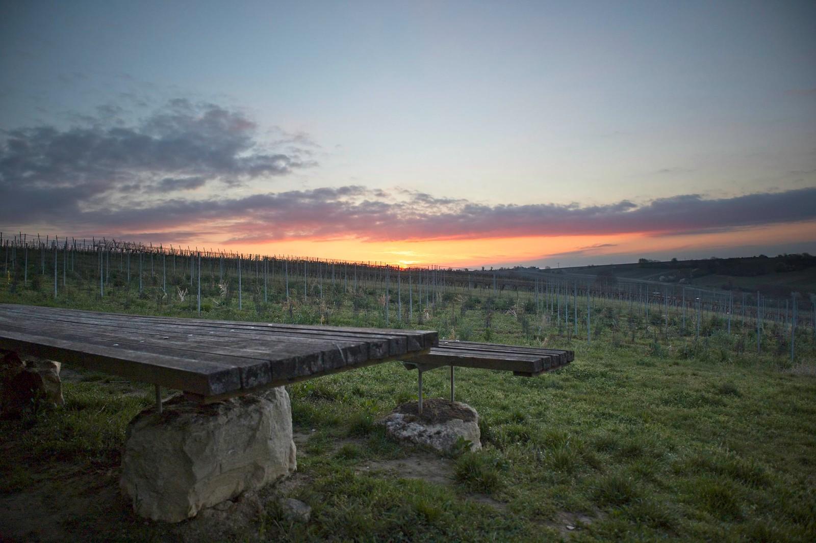 Sonnenaufgang am Tisch des Weines (unterhalb Windhäuser Hof)