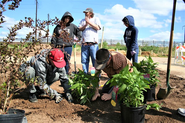 During a depaving project community planting day, rain gardens were added to the parking lot of the NorthEast Treatment Center.   <em> Photo: © PWD</em>