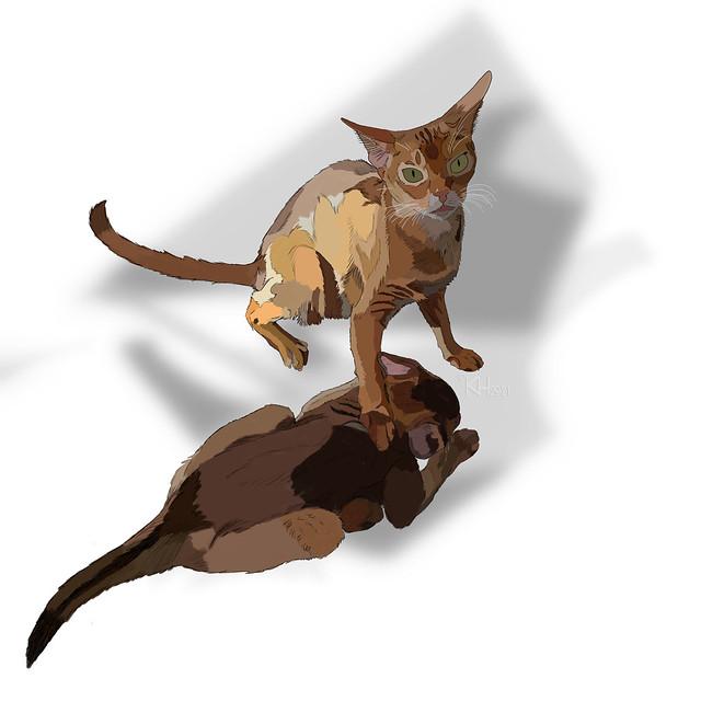 kiipi-kitten-InkColourShadows