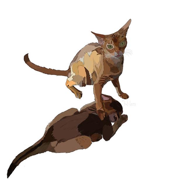 kiipi-kitten-basecolourInk