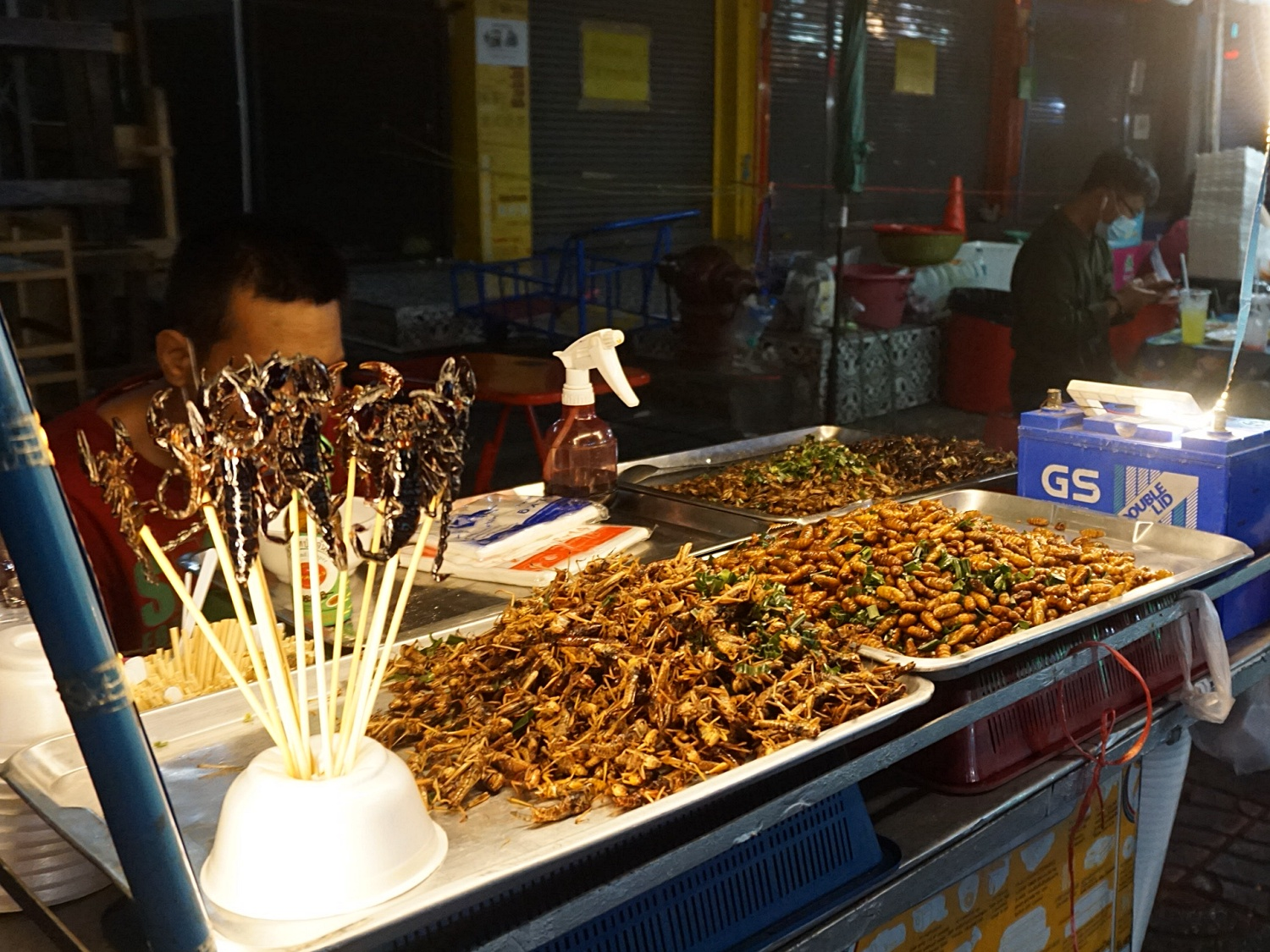 night market insects