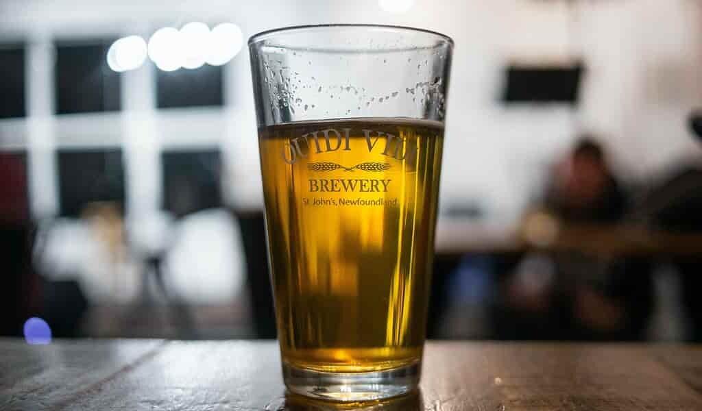 Les déchets de bière transformés en nourriture et carburant