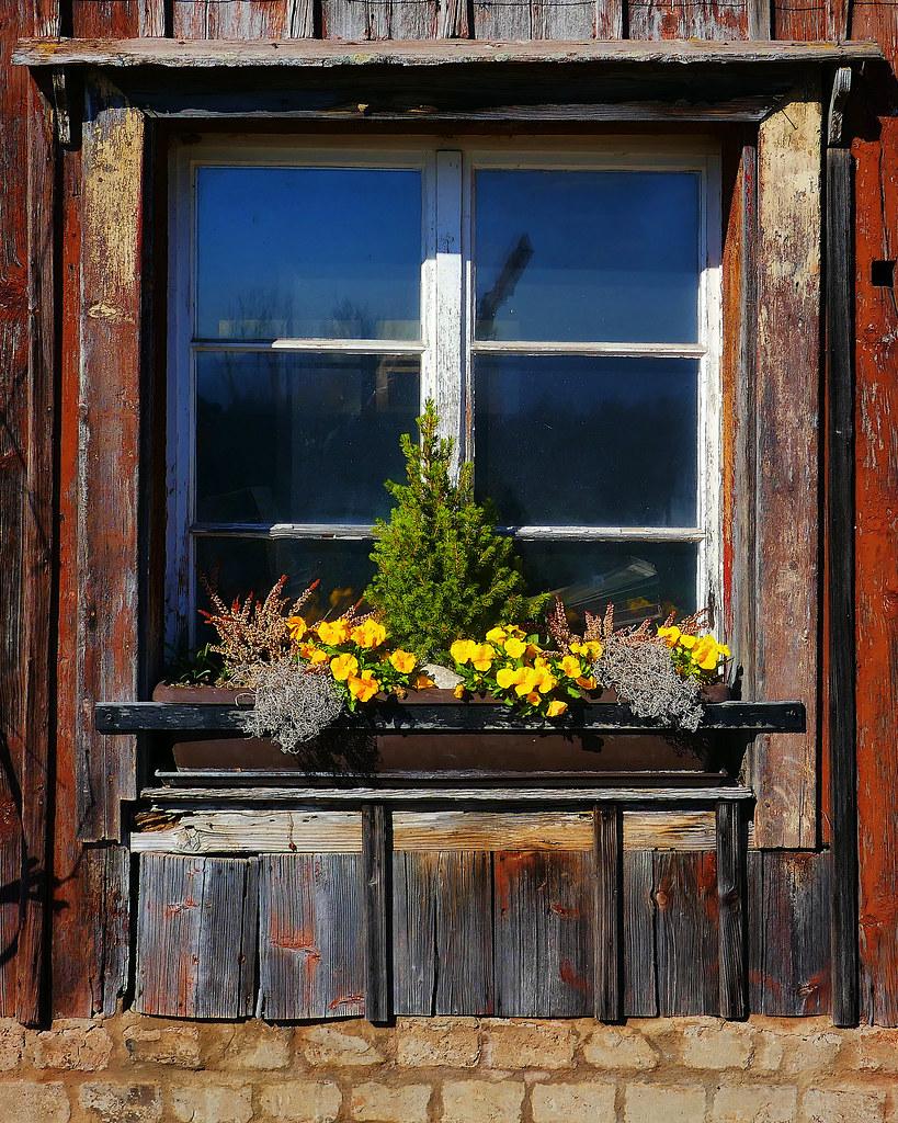 Winter-Spring Window