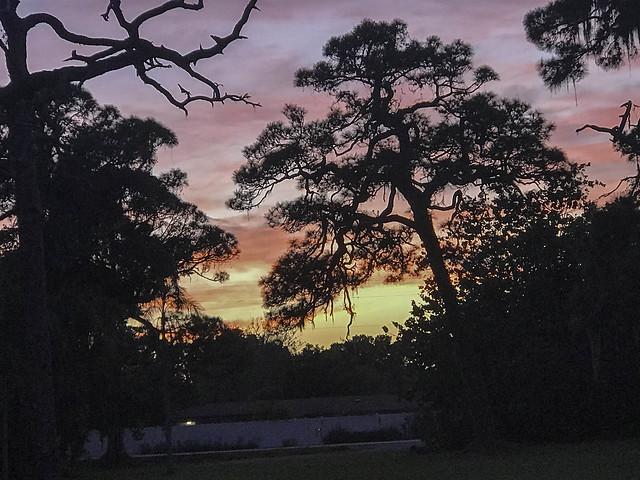 Sarasota Sunset IMG_4502-3