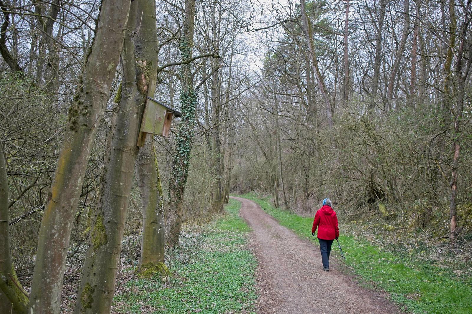 Im Landschaftsschutzgebiet Pfauengrrund