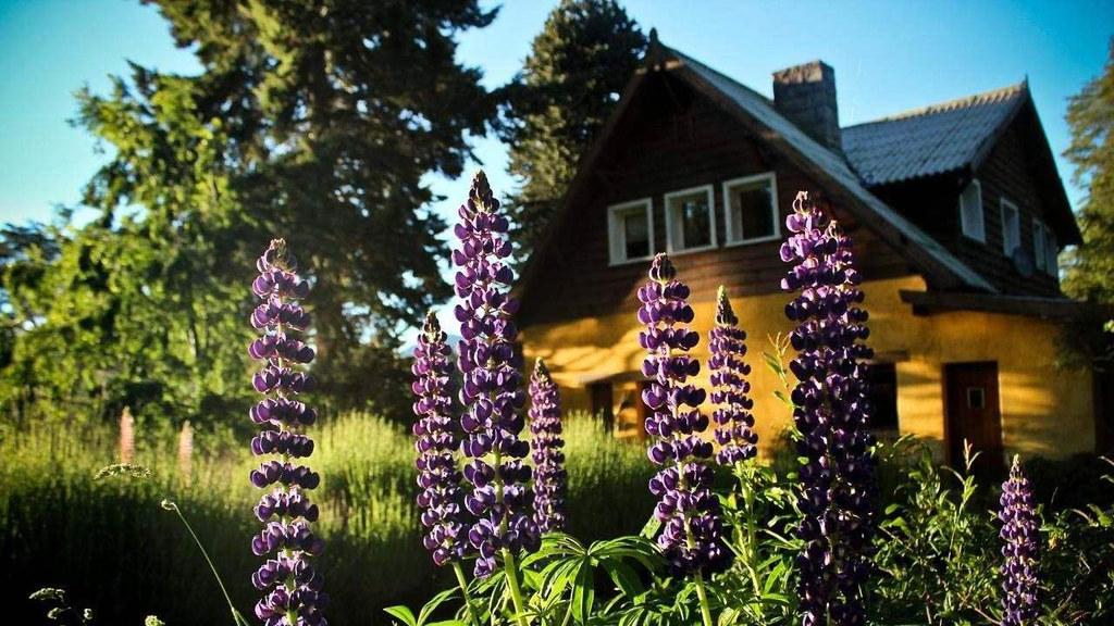 Los Juncos Patagonian - Hoteles en Bariloche con vistas al lago