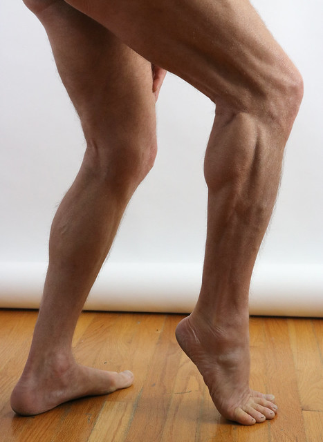 Leg Reference #11