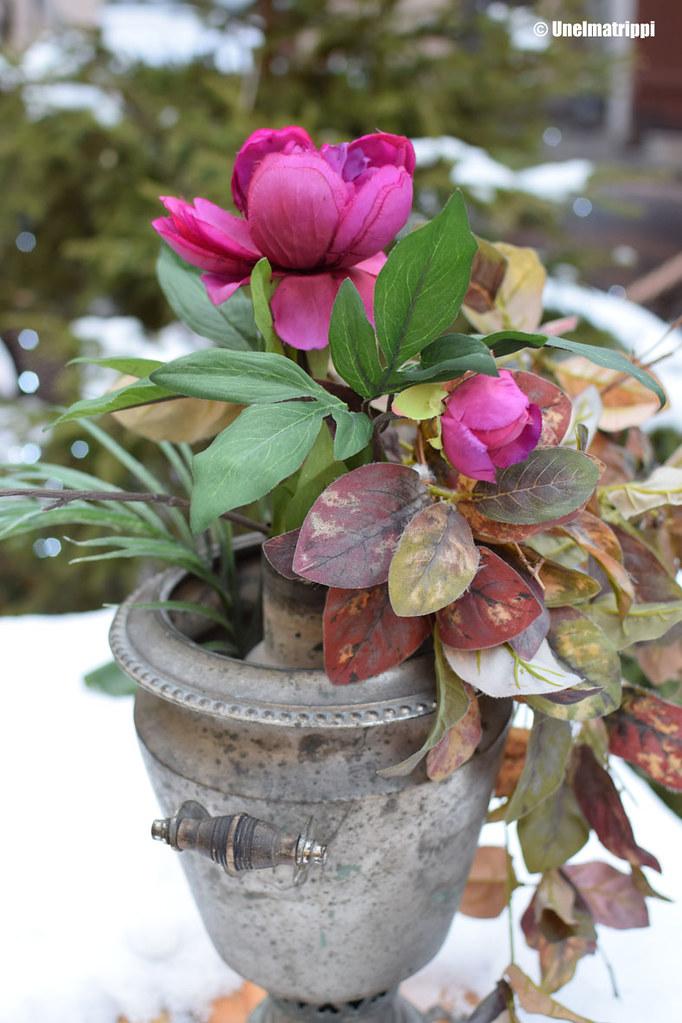 Kukkia maljakossa Tallinnan vanhassa kaupungissa
