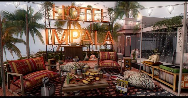 🌅 Sunrise at Impala Hotel .- 🌅
