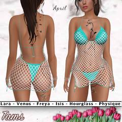 Bikini and Fishnet Coverup - April