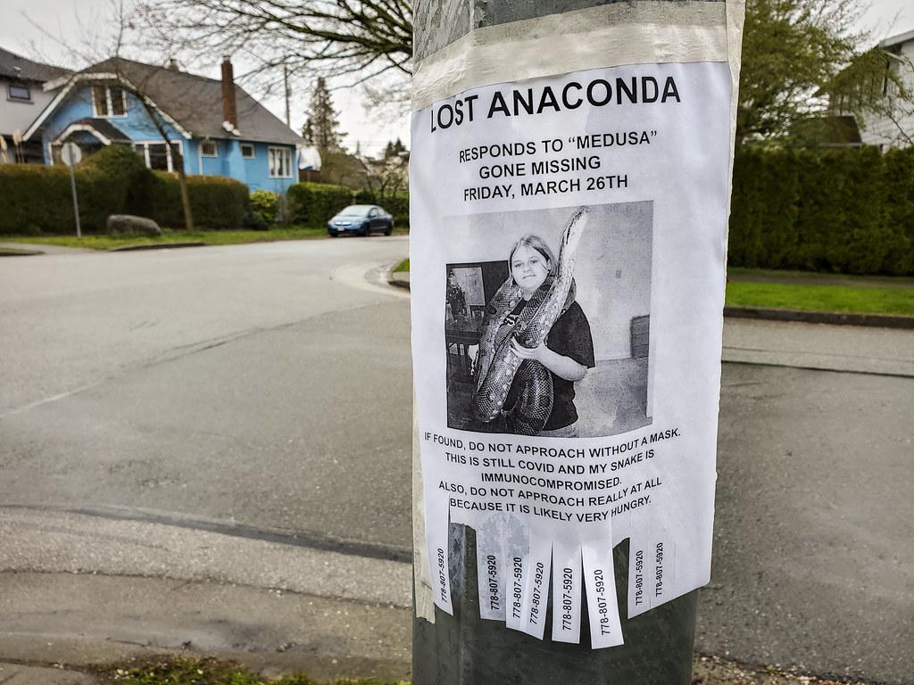 Dangerous Neighbourhood