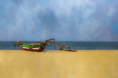 On a Sri Lankan Beach