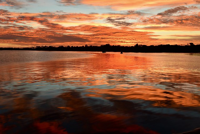 NSW Australia. —  tea gardens/ Nelson Bay