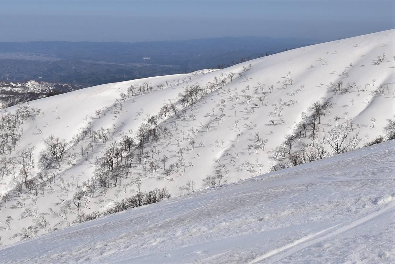 【新潟】守門岳 東洋一の大雪庇へ日帰り雪山登山
